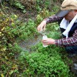 【告知】日の出処分場周辺の水質調査 2016.11.6 水質・放射能調査フィールドワーク