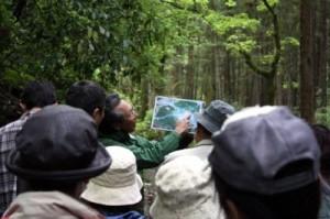 市民による環境調査活動の風景